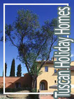 Tuscan Holiday Homes Vacation Rentals